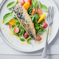 Sesame mackerel & roasted radish salad