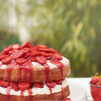 Strawberry and rose water vanilla sponge