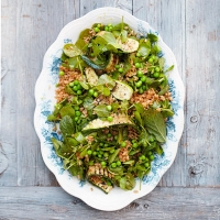 Summer_grain_salad