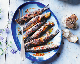 Piri piri grilled sardines with lemon & fennel salad