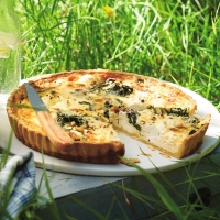 Spinach, pine nut and ricotta tart
