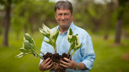 Alan Titchmarsh's Summer Garden - How to divide perennials