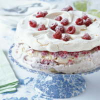 Iced meringue gateau with raspberries and cassis
