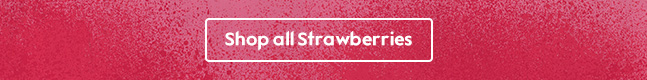 Shop all Strawberries
