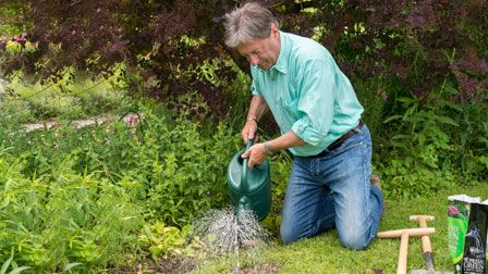 Alan Titchmarsh's Summer Garden - How to protect your lawn