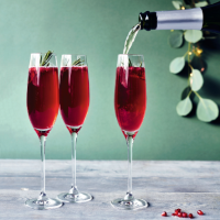 Rosemary & pomegranate fizz