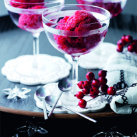 Christmas sorbet with cranberries