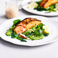 Harissa and yogurt salmon