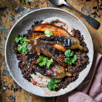Spiced stuffed aubergines with tahini and beluga lentils