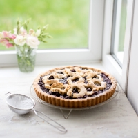Blueberry & hazelnut torte