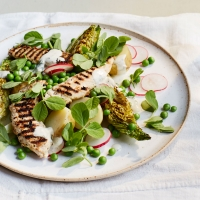 Pea and chicken caesar salad
