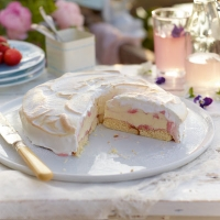 Strawberry ripple baked alaska