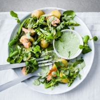 Warm Jersey Royal, smoked trout and watercress salad