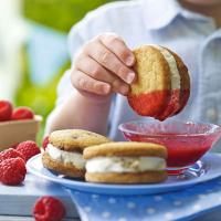 Heston's Ice cream sandwich with fresh raspberry dipping sauce