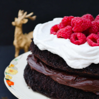 Rich mocha vegan chocolate cake