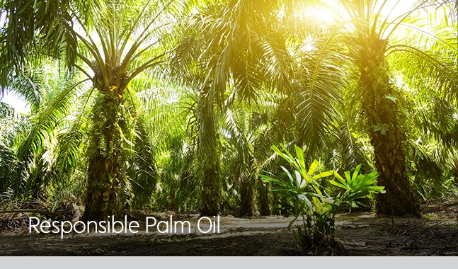 100% of the palm oil used in Waitrose & Partners food is certified sustainable by by the RSPO