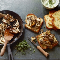 Mushrooms on toast with goat's cheese