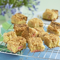 Rhubarb crumble squares with orange zest