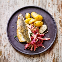 Sea bass with fennel & beetroot