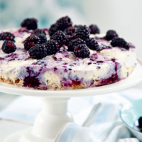 Blackberry ice-cream cake