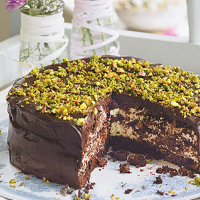Chocolate pistachio torte