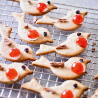 Mixed spice Christmas robin biscuits