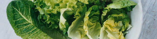 Lettuce and salad leaves