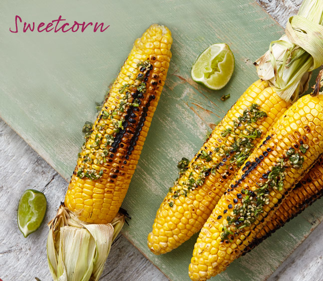 Grilled corn with lime and coriander pesto