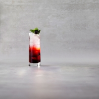 Blackberry-&-mint-spritzer