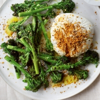 Griddled-Tenderstem-broccoli,-labneh-and-dukkah