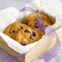 Wheat-free cookies with white chocolate and cranberries