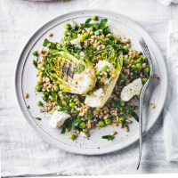 Grilled lettuce & pea salad with spelt goat's cheese