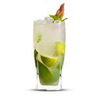 282-applemocktail