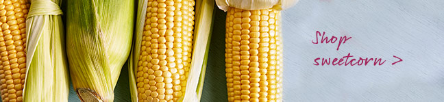 Shop sweetcorn