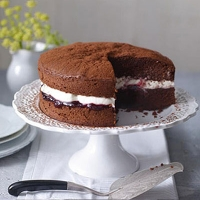 Chocolate cinnamon cake with damson cream filling