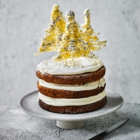 Spiced-Rum-and-White-Chocolate-Christmas-Cake