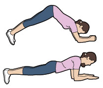 Plank to dolphin