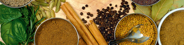 generic-spices-647x160-3col