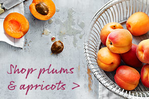 shop plums and apricots