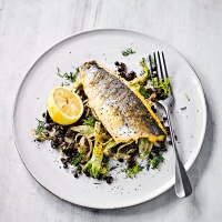 Sea bass with caramelised fennel & Puy lentils