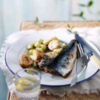 Grilled Mackerel and New Potato Salad