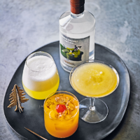 Sherbert gin fizz by Heston